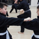 Kung Fu junior parata