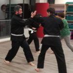 Mossa di Kung Fu