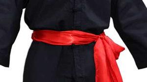 cinture kung fu